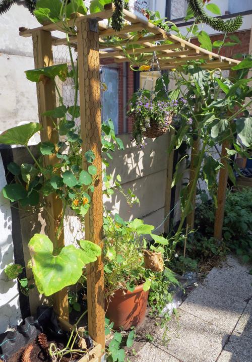 Klimrek Voor Planten.Klimrek Tuin In De Stad